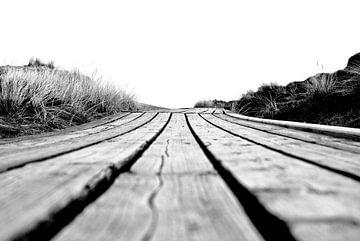 Sylt: Holzweg zur Dünenspitze von Norbert Sülzner