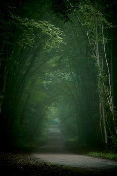 Edge of the wood van Stéphanie Foucher
