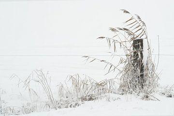 Winters landschap von Fons Brekelmans