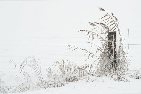 Winters landschap van Fons Brekelmans