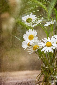 Stilleben mit Gänseblümchen von Guna Andersone