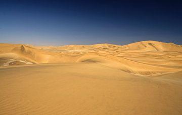 Namib woestijn nabij Swakopmund von Jan van Reij