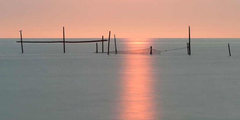 Sea-light van Aline van Weert
