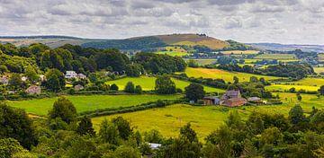Die Landschaft von Shaftesbury in Dorset, England von Henk Meijer Photography