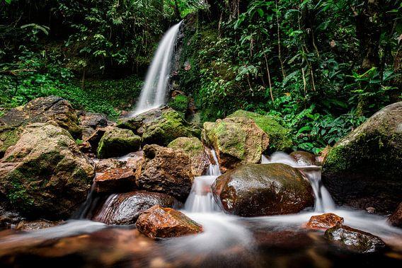 Waterval in Nationaal Park Halimun-Salak - West-Java, Indonesië van Martijn Smeets