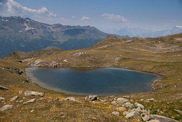 Alpensee von Manuel Declerck