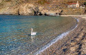 La plage d'Achla, Andros, Cyclades, Grèce sur Konstantinos Lagos