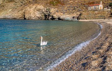 Het strand van Achla , Andros, Cycladen, Griekenland