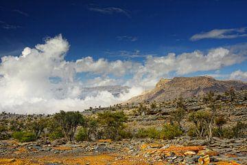 Bergen in Oman van Yvonne Smits