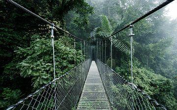 Pont suspendu au Costa Rica sur Michiel Dros