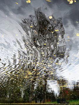 Urban Reflections 152 sur MoArt (Maurice Heuts)