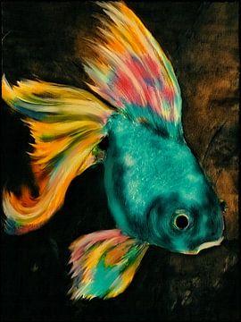 Pop Art - Schleierfisch