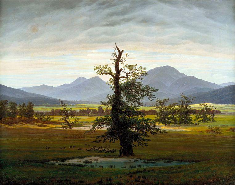 Caspar David Friedrich - De eenzame boom van 1000 Schilderijen