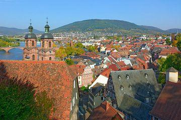 Quaint Old Town of Miltenberg van Gisela Scheffbuch