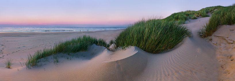 Panorama Nederlandse Duinen van Sander Poppe