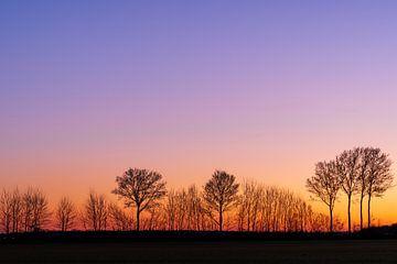 Sonnenuntergang in Limburg von elma maaskant
