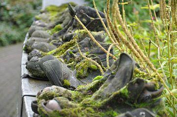 Shoes van Maaike van der Horst