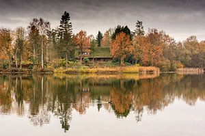 Herfstlandschap autumn landscape van Ellen Denkers-Hartman
