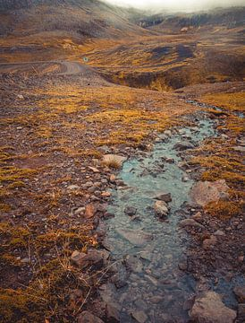 Iceland von Niels Hemmeryckx