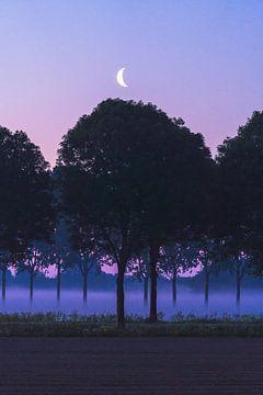 Sonnenaufgang mit einem Halbmond von Mirac Karacam