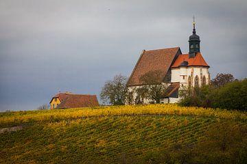 Maria in de wijngaard, Volkach van Jan Schuler