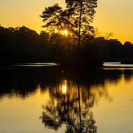 Zon gaat onder achter de bomen op een eilandje in de Oisterwijkse Bossen en Vennen. van Margreet Frowijn
