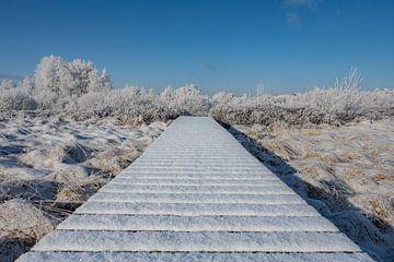 Winter im Hohen Venn von Heinz Grates