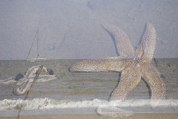 Strand und Meer, Seesterne und Segelboot von Cora Unk