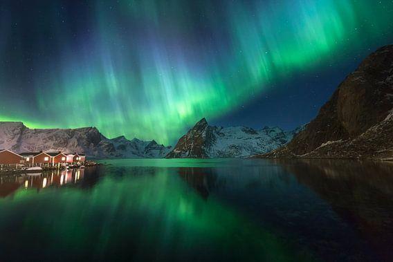 Noorderlicht in Hamnoy (Lofoten).