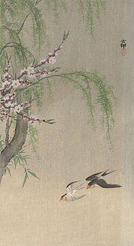 Zwaluwen in vlucht van Ohara Koson