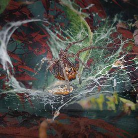 Herfst indrukken van Andreas Schulte