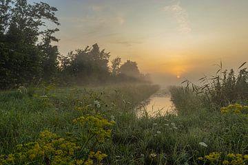 ein nebliger Sonnenaufgang von Frans Bruijn
