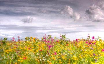 Bloemenzee von Franke de Jong