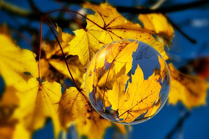 In de glazen bal - herfstbladeren van Christine Nöhmeier