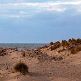 Zand en zee. van Ulbe Spaans