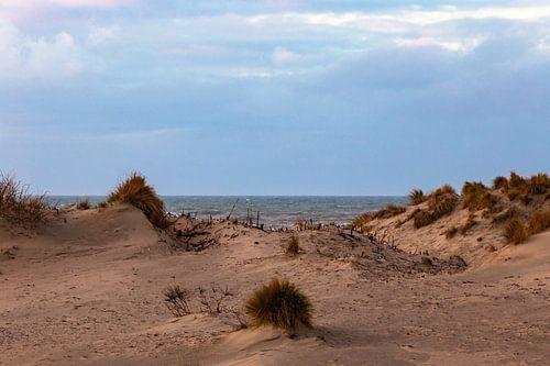 Zand en zee. van