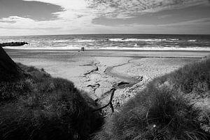 Strand en Duinen van Wytze Plantenga