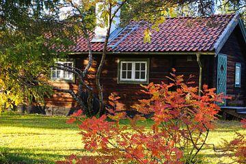 Huis in de Zweedse herfst van Thomas Zacharias