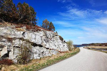 Landschap Noorwegen van Anton Roeterdink