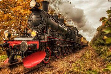 Miljoenenlijn  tijdens de herfst in Zuid-Limburg van John Kreukniet