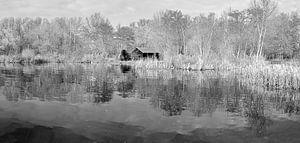 zwart-wit foto van een meer in de winter