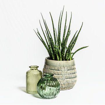 Stilleven met glas en plant van Theo Bense