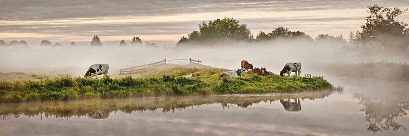 Des vaches dans le Molenpolder près de Tienhoven sur Frans Lemmens