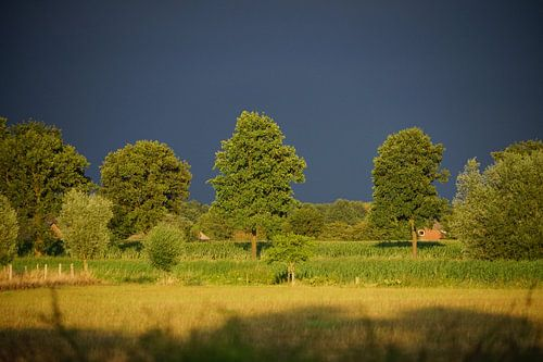 Regen En Zonneschijn : Zonneschijn bilder auf leinwand poster bestellen ohmyprints