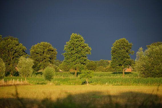 Na regen komst zonneschijn van Jan Nuboer