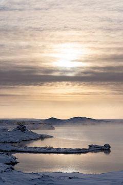 Winterlicht am Myvatn auf Island von Andreas Hackl