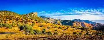 Het Rifgebergte in Marokko, panorama van Rietje Bulthuis