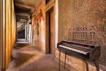 Flur in einem verlassenen Schloss. von Roman Robroek