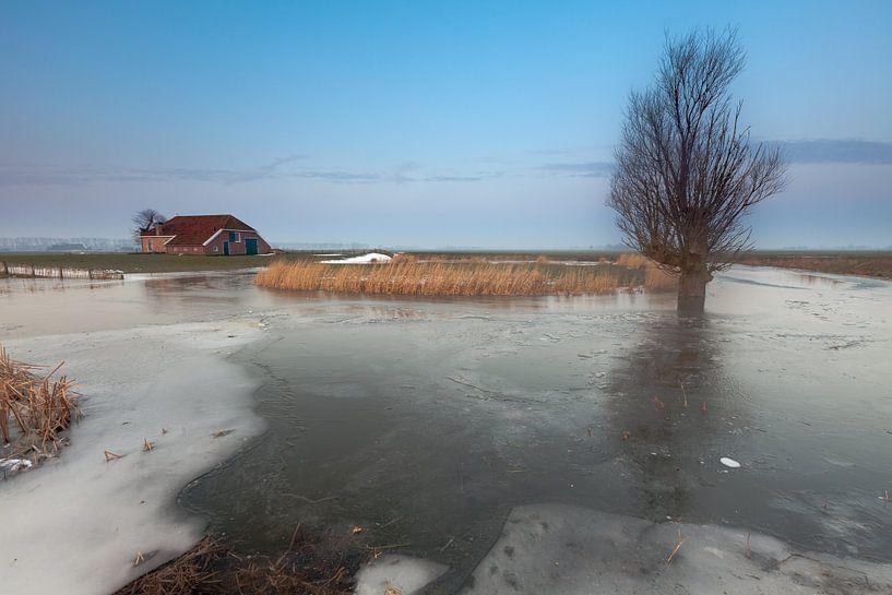Winter bij Harssensbosch van Ron Buist