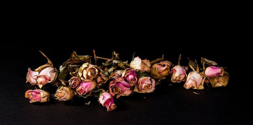 Gedroogde rozen op een rij van Ton de Koning